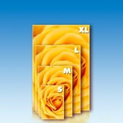 Foto obraz - obdĺžnik na výšku 2:3